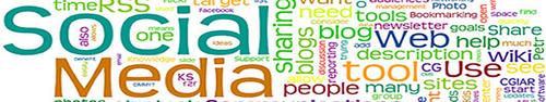 Como foi a estratégia de monitoramento de redes sociais na campanha de Marina Silva em 2010